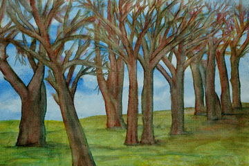 Árboles en invierno