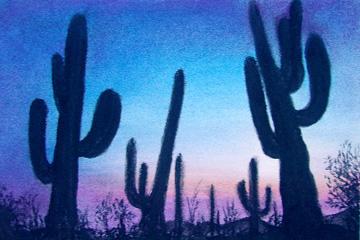 Cactus en Sonora